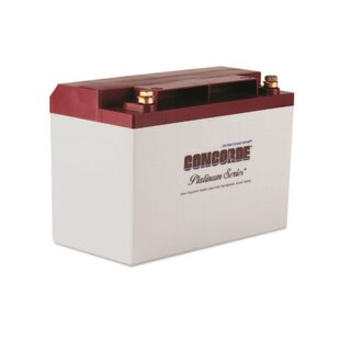CONCORDE RG-35A 12 V 29 Ah AGM  General Aviation Starting/Main VRLA Aircraft Battery